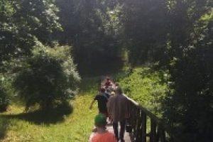 Edukacinė pažintinė veikla Sirvėtos parke 2020-06-29_html_42d6351b
